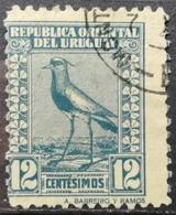 1923 URUGUAY Southern Lapwing Bird - Uruguay