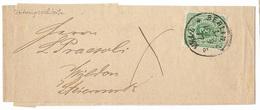 Germany 1877 Berlin Newspaper Wrapper To Wilden Styria Slovenia - Deutschland