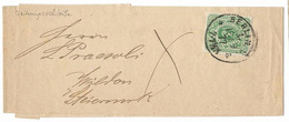 Germany 1877 Berlin Newspaper Wrapper To Wilden Styria Slovenia - Germania