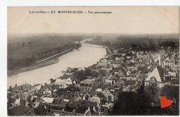 35194-ZE-41-MONTRICHARD-Vue Panoramique - Montrichard