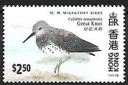 Hong Kong 1997 -MNH - Great Knot (Calidris Tenuirostris - Vögel