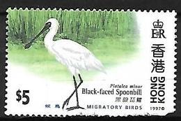 Hong Kong 1997 -MNH - Black-faced Spoonbill (Platalea Minor - Vögel