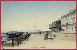 Collyer Quay Singapore_Johnston's Pier_Bullock Cart_Ox 1900's (UNC)_n°24 OTKPbITOE_S'pore-CPA Old_Collection - Singapore