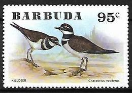 Barbuda 1976 - MNH - Killdeer (Charadrius Vociferus - Vögel