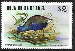 Barbuda 1976 - MNH - Purple Gallinule (Porphyrio Martinica - Vögel