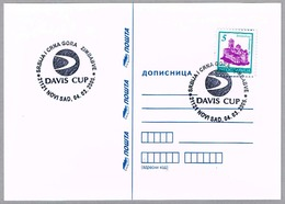 COPA DAVIS SERBIA Vs ZIMBAWE. Novi Sad 2005 - Tennis