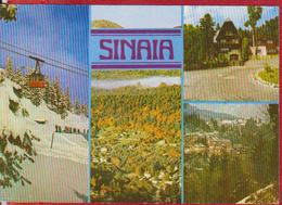 SINAIA CABLEWAY ROMANIA POSTCARD UNUSED - Rumänien