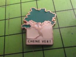 712c Pin's Pins / Rare Et De Belle Qualité / THEME  AUTRES / ARBRE CHENE VERT - Autres