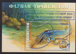 TAJIKISTAN, 2018, MNH, FISH, WATER FOR SUSTAINABLE DEVELOPMENT OVERPRINT, S/SHEET - Fishes