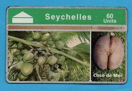 SEYCHELLES   L & G -  807A - Seychelles