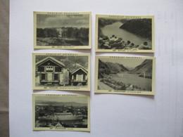 5 IMAGES CHOCOLAT DELESPAUL N°484,486,487,488,490 OSLO,TELEMARK,STAVANGER,RYFYLKE,HARDANGER - Vieux Papiers