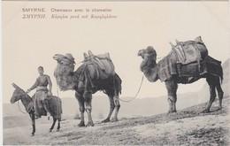 TURQUIE TURKEY  IZMIR SMYRNE    Chameaux Avec Le Chamelier - Turquie