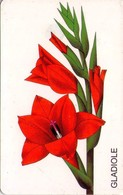 TARJETA TELEFONICA DE ALEMANIA. FLORES 1 - EL GLADIOLO,  PD 03/98-1.2 (192) - Flores
