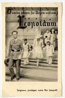 Small Card / ROYALTY / Belgique / België / Roi Leopold III / Koning Leopold III / Leopoldum - Familles Royales