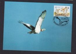 41.- HUNGARY 1994  Great Bustard (Otis Tarda) - Vögel
