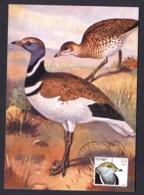 43.- PORTUGAL 2001 MAXIMUM CARD  Great Bustard (Otis Tarda) - Vögel