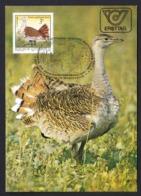45.- AUSTRIA 1982 MAXIMUM CARD BIRDS - GREAT BUSTARD (Otis Tarda) - Vögel