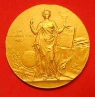 1914 Médaille Vermeil Cours Jules Oudet Instituteur 66 Perpignan Par Alphée Dubois Instruction Publique Diam 5cm 63gr Ag - Francia