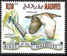 Maldives 2014 - MNH - Indian Pond Heron (Ardeola Grayii - Vögel
