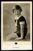Postcard / ROYALTY / Belgique / België / Prins Albert / Prince Albert / Unused - Familles Royales