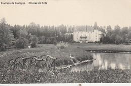 Environs De Bastogne , Chateau De Neffe - Bastogne
