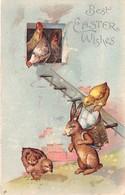 Illustrateur Non Signé - Fantaisie Gaufrée - Lapin Humanisé - Poussin - Pâques
