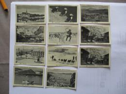 10 IMAGES CHOCOLAT DELESPAUL N° 500 à 507,510,512 TRONDHEIM,LOFOTEN,TROMSO,SPITZBERG,FUGLEFJELL,CAPTURE D'UN RENNE,CHIEN - Vieux Papiers