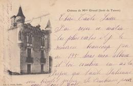 16 - Charente - Ruffec - Forêt De Tusson - ( Château De Mme Giraud ) - Ruffec