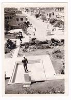 Rare CPM N/B Iran, Bushehr / Bushier, 1969 - Iran