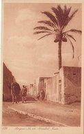LIBIA - Bengasi /  La Via Abdallah Bala - Libia