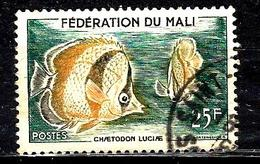 MALI 6° 25f Vert Foncé, Orange Et Sépia Poissons Chaetodon Luciae (10% De La Cote + 015) - Mali (1959-...)