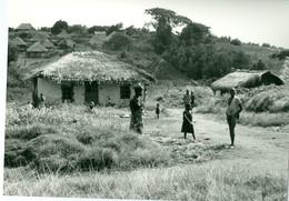 Photo Zaïre Région De Mahagi , Village Traditionnel Maison En Pisé 1988 Photo-service PP. Blancs - Afrique