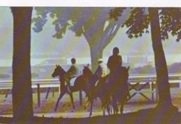 New York Saratoga Race Track Morning Mist Horse Racing - Saratoga Springs