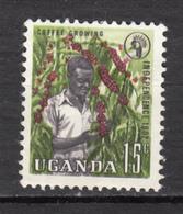 Uganda, Ouganda, Café, Coffee - Ernährung