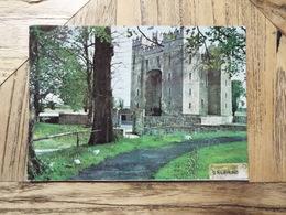 Clare - Bunratty Castel - (5369) - Clare