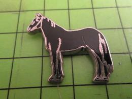 912B Pin's Pins /  Rare & De Belle Qualité : THEME ANIMAUX / GRAND CHEVAL NOIR - Animals