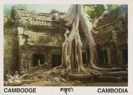 00727 - CAMBODGE - SIEM REAP - TAPROHM - Cambodia