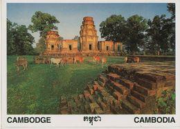 00732 - CAMBODGE - SIEM REAP - PRASAT KRAVAN - Cambodia