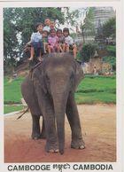 00747 - CAMBODGE -Phnom Penh Vat Phnom Touristes Et éléphant - Cambodia