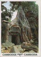 00752 - CAMBODGE - SIEM REAP - TAPROHM - Cambodia