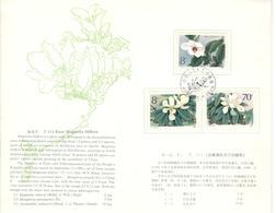 11420 - Encart - 1949 - ... République Populaire