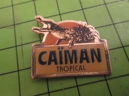 1012b Pin's Pins /  Rare & De Belle Qualité : THEME ANIMAUX / CAIMAN TROPICAL ALLIGATOR CROCODILE - Animals
