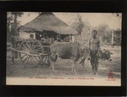 Cambodge Phnom-penh Attelage Et Charrette Du Pays édit. Dieulefils N° 1822  Attelage De Boeufs - Cambodia