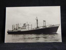 Steamer Hamburg__(22089) - Dampfer
