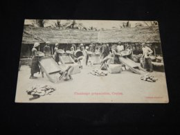 Ceylon Plumbago Preparation__(20015) - Sri Lanka (Ceylon)