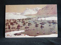Norway Lofoten Fiskeflaade__(21930) - Norvège