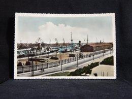 Portugal Matosinhos Porto De Leixoes -65__(22383) - Porto