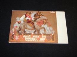 Sokol J.Prochazka 1929__(23017) - Ansichtskarten