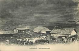 VACHERESSE - Montagne D'ubine. - Vacheresse