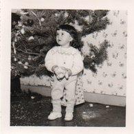 82Ve  Photo Enfant Jeu Jouet Ours En Peluche Sapin De Noel - Photographie